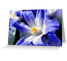 simply blue Greeting Card