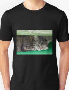 cute cat sleeping under the bench T-Shirt