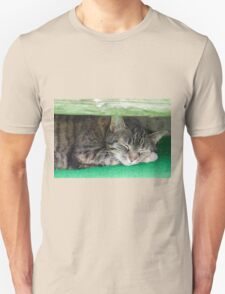cute cat sleeping under the bench Unisex T-Shirt