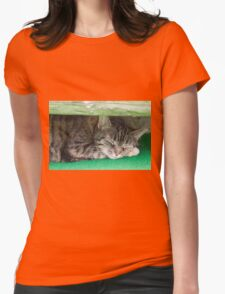 cute cat sleeping under the bench Womens Fitted T-Shirt