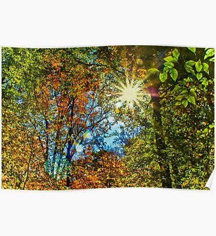 Sun Burst Poster