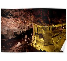 Color underfoot - Lehman Caves Poster