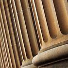 scholastic columns  by Maria  Moro
