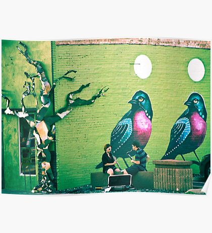SONG BIRDS. Poster