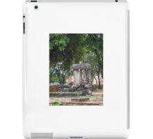 Buddhist Statue and Flowers iPad Case/Skin