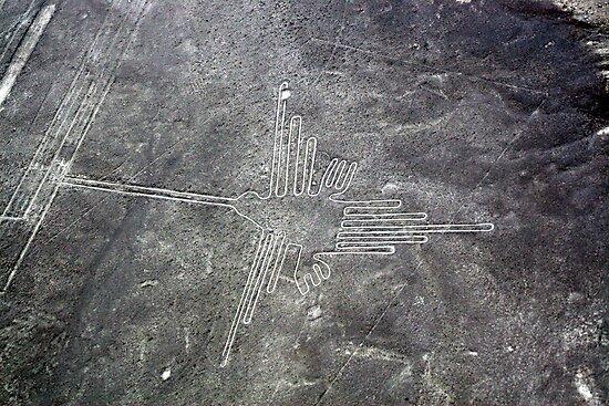 Nazca Hummingbird by kmatm