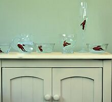 Beta Fish in Bowls by Callie Smith