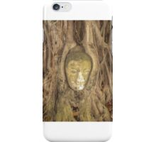 Buddha Head Statue iPhone Case/Skin