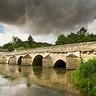Bridge at Lavardin by Chris Tarling