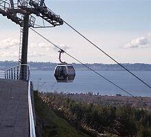 Gondola Ride in Rotorua, New Zealand by Callum Denholm