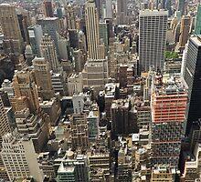 Tourists viewing downtown Manhattan by Gary Eason + Flight Artworks