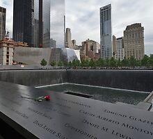 Rose at 911 Memorial Pool by Gary Eason + Flight Artworks