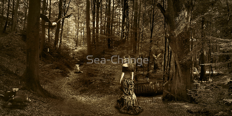 Have you ever stopped and wondered...(Image and Verse) by Sea-Change