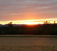 Sunset in Dalecarlia by HELUA