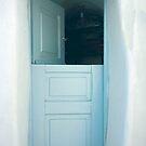 Open Greek Dutch Door by phil decocco