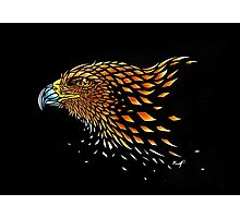 Eye of the Eagle Photographic Print
