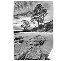 Bruny Island Beach Poster