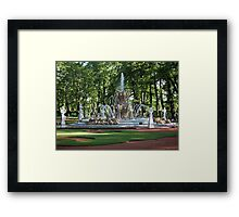 Fountain in the summer garden of St. Petersburg Framed Print