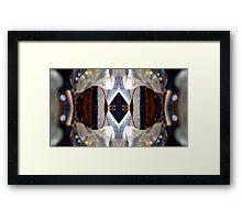 Silica Portal Framed Print