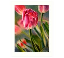 Spring Breeze - Watercolor Painting of Pink Tulips Art Print