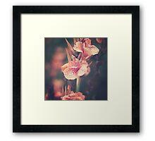 Vintage Pink Flowers Framed Print