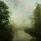 Six Mile Creek by JKKimball
