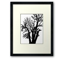 silhouette of the tree Framed Print