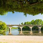 Canopy over the Dordogne by Chris Tarling