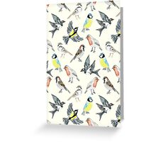 Illustrated Birds Greeting Card
