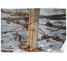 Winter fence post Poster