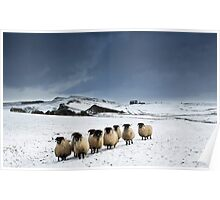 Winter on Hadrian's Wall - c12 Poster