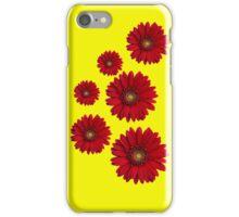 Claret Gerberas iPhone Case/Skin