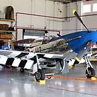 P-51 Mustang - Polk City, Fl. U.S.A. by Glenn Cecero