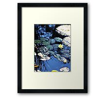 In the Shadows of Monet Framed Print