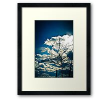 Eco Friendly  /  2 Framed Print