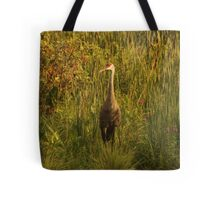 Sandhill Crane Standing on Shoreline Tote Bag