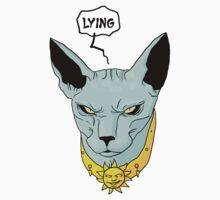 Lying Cat Kids Clothes