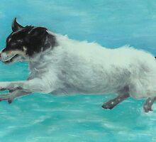 Flying Boo by Pam Humbargar