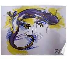 Salamander Burst Poster