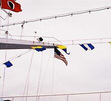 Flags by Monifa