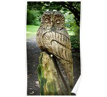 Carved Owl Poster