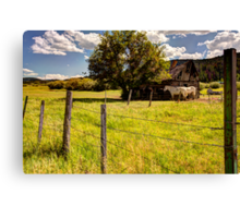 In the Shade of the Old Cabin Canvas Print