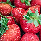 Strawberry Anyone... by Sherry Hallemeier