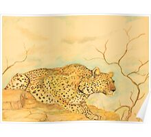 Leopard Oil Pastel Drawing Poster