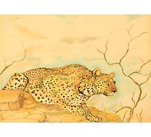 Leopard Oil Pastel Drawing Photographic Print