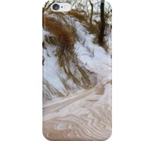 Winter Paints iPhone Case/Skin