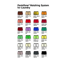 PantsTone Matching System for Laundry Photographic Print