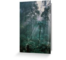 Forest Light I  Greeting Card