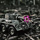 Flower Power by Evan Jones