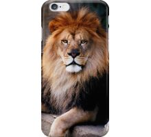 Straight through the heart  iPhone Case/Skin